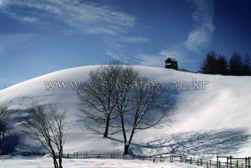 韩国的冬季风景<br>(한국의 겨울풍경)