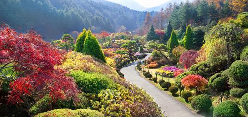 Autumn in Korea