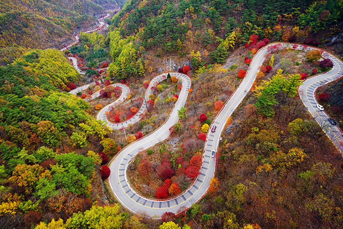 Windungen durch das Herbstlaub,  Danyang-gun