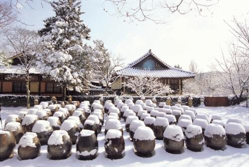 韩国的冬天