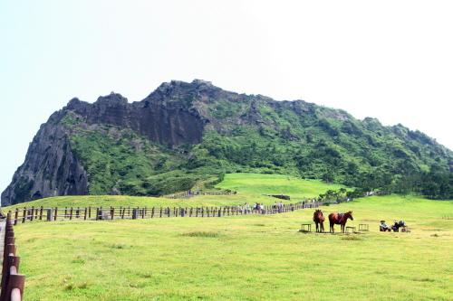 美丽的济州岛景观