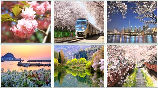 El encanto de las cuatro estaciones de Corea