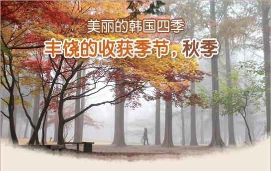 美丽的韩国四季