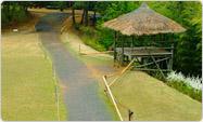 竹子谷主题公园