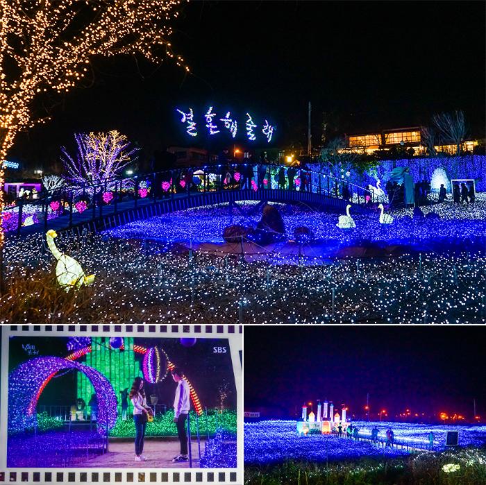 2015灯光庆典美丽的童话王国