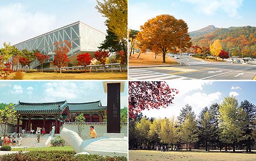 首尔地标——南山n首尔塔 more info  旅游信息: *首尔林() 地点:首尔