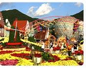 Enjoy Spring Flowers at Seoul Land