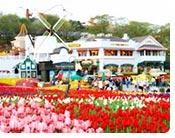 Everland Flower Carnival Festival