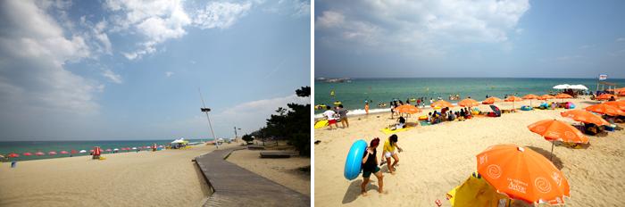 浦海水浴场周边游览,还提供了享受休闲体育(香蕉快艇