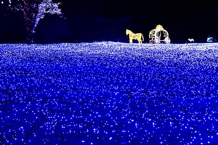 慶州、大邱、清道