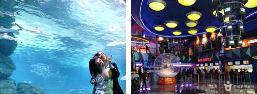 曲江海洋馆地下隧道