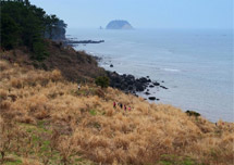 Jeju Olle Trail