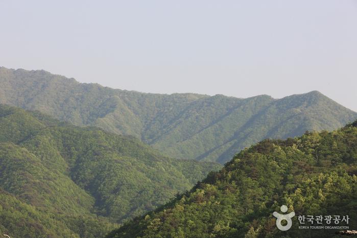 Jirisan National Park (Hadong) (지리산국립공원(하동))