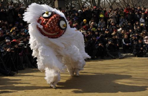 한국민속촌 40번째 생일잔치 금송아지를 드립니다