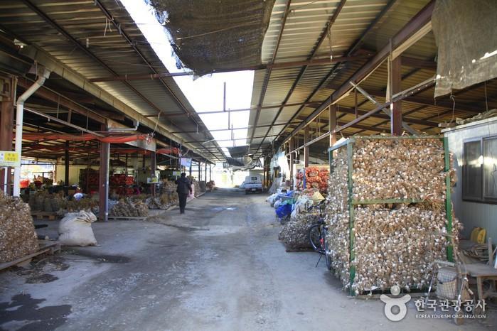 의성마늘장터 (의성명품마늘영농조합법인)