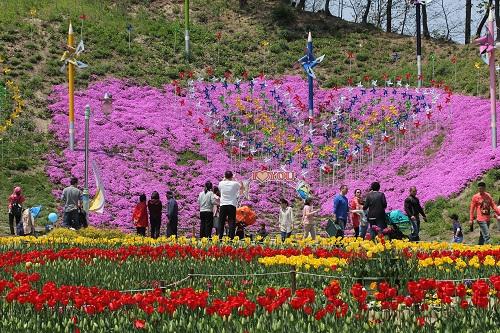 Yongin Agricultural Theme Park (용인농촌테마파크)