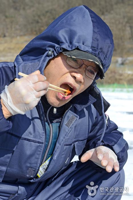 1급수에서 나고 자란 빙어는 잡은 즉시 회로 먹어도 좋을 만큼 깨끗하다.