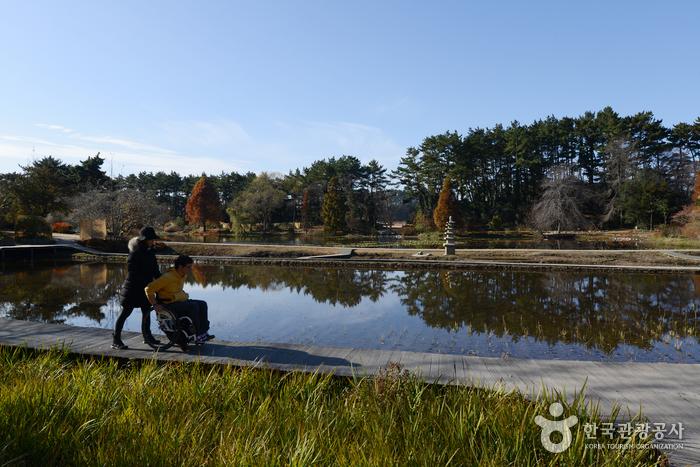 데크가 놓여 이동이 편한 천리포수목원