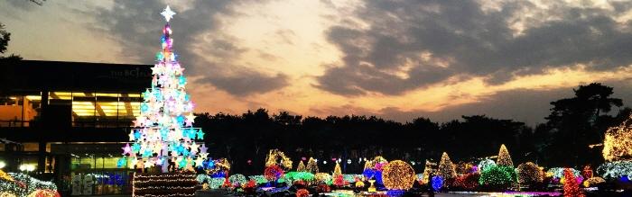 Lichterfestival im Botanischen Garten Byeokchoji (벽초지수목원빛축제)