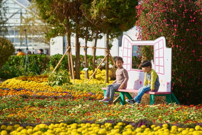 巨济岛花卉节(거제섬꽃축제)