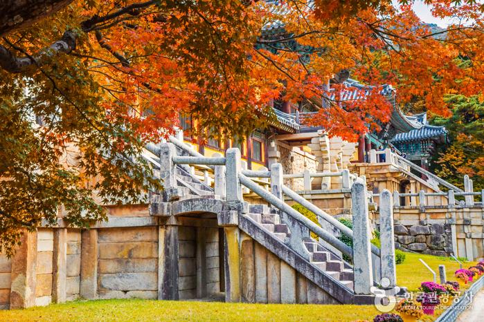Gyeongju Bulguksa Temple [UNESCO World Heritage] (경주 불국사 [유네스코 세계문화유산])