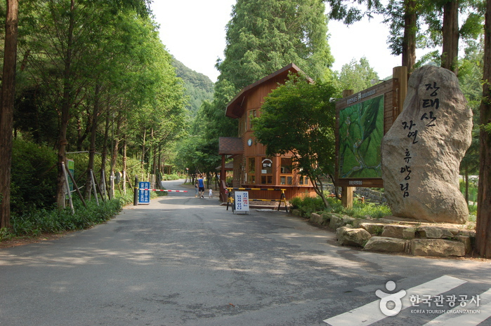 Jangtaesan Recreational Forest (장태산자연휴양림)
