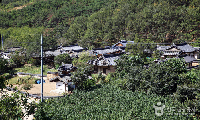 Daegu Otgol Village (대구 옻골마을)