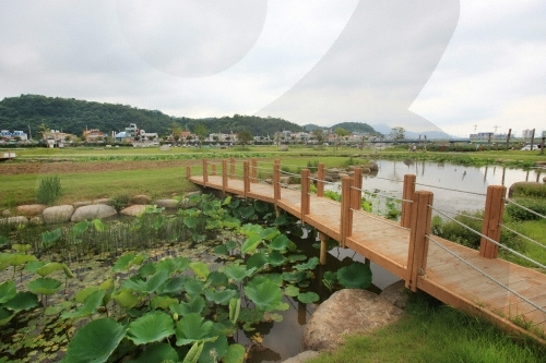 Tamjin River Wetland Eco-Park (탐진강 생태습지원)