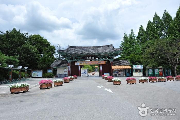 Jeonju Zoo (전주동물원)