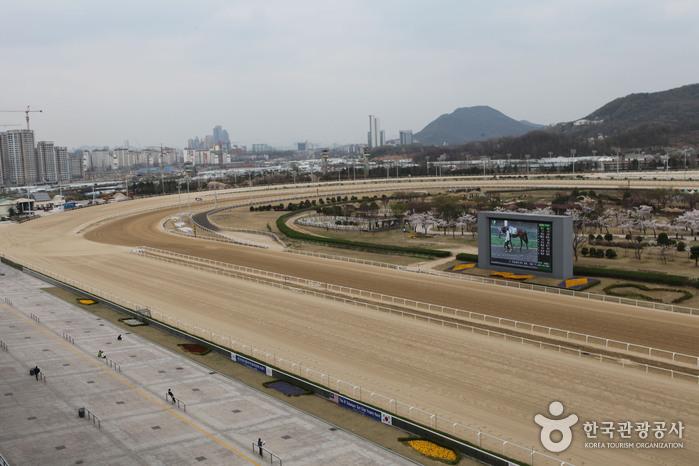 렛츠런파크 서울 주 경기장