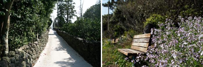 마을 안을 지나가는 돌담길과 꽃 더미에 파묻힌 벤치