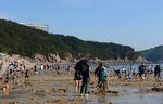 왕산해수욕장