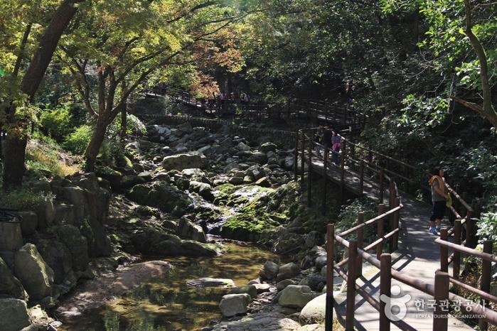 津寛寺渓谷(진관사계곡)