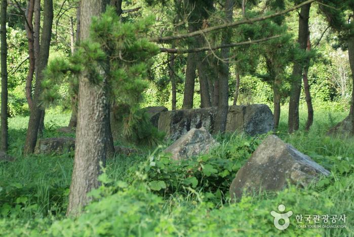 영광 성산리지석묘군