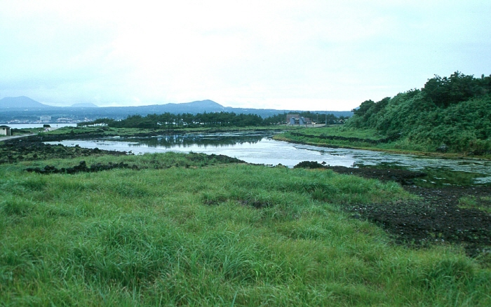 飛揚島(비양도)