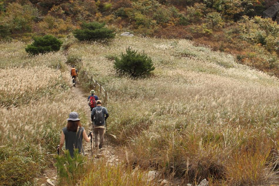 천황산에서 재약산을 향해 '영남알프스 하늘억새길'을 걷는 탐방객