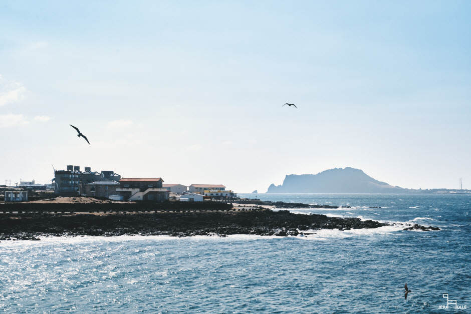 Jeju Olle Trail - Route 1-1 (Udo Island Olle) ([제주올레 1-1코스] 우도-올레)