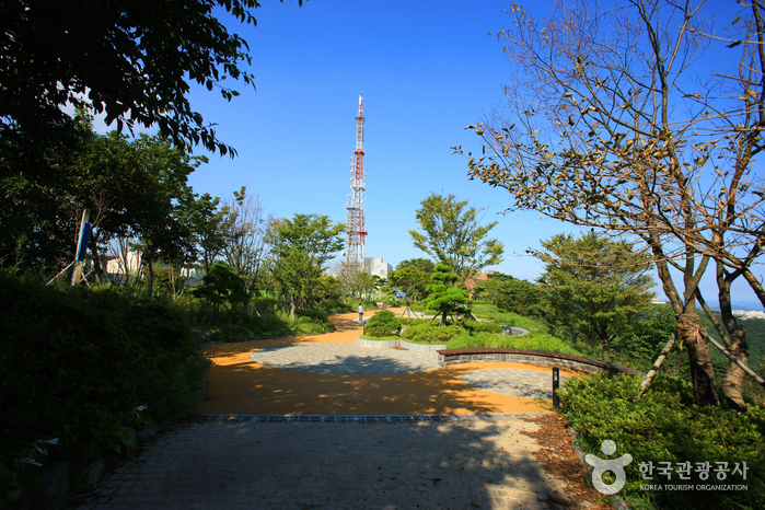 Hwangnyeongsan Mountain (황령산)