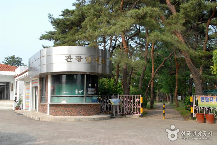 송호국민관광지 야영장