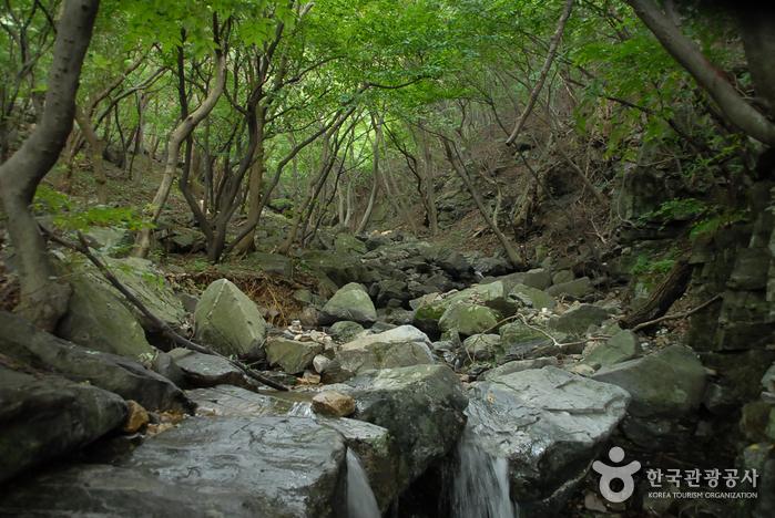 Oseosan Mountain (오서산)