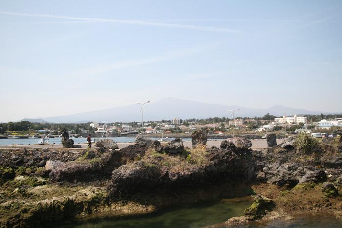 독특한 분위기의 위미 해안가 풍경