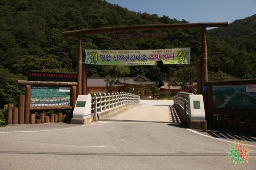 明岩山菜健康村(명암산채건강마을)