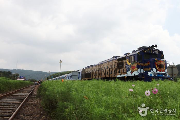 남도해양관광열차 S-트레인(S-train)