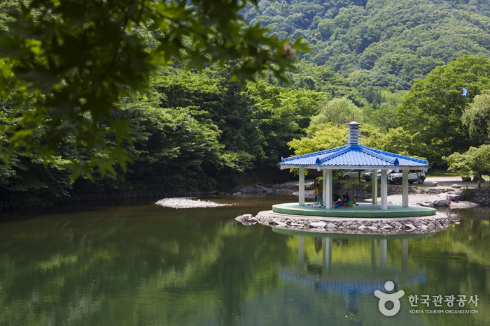 Naejangsan National Park (내장산국립공원)
