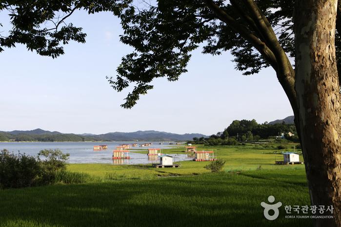 禮唐貯水池(禮唐旅遊區)(예당저수지(예당관광지))