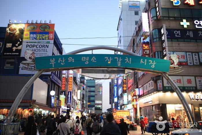Mercado Jagalchi de Busan (부산 자갈치시장)