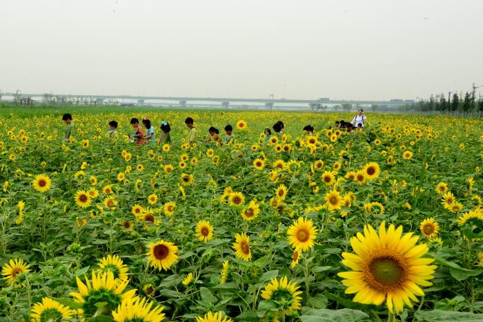 대저생태공원