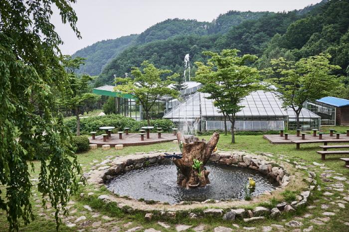 Yanggu Eco-Botanical Garden (양구생태식물원)
