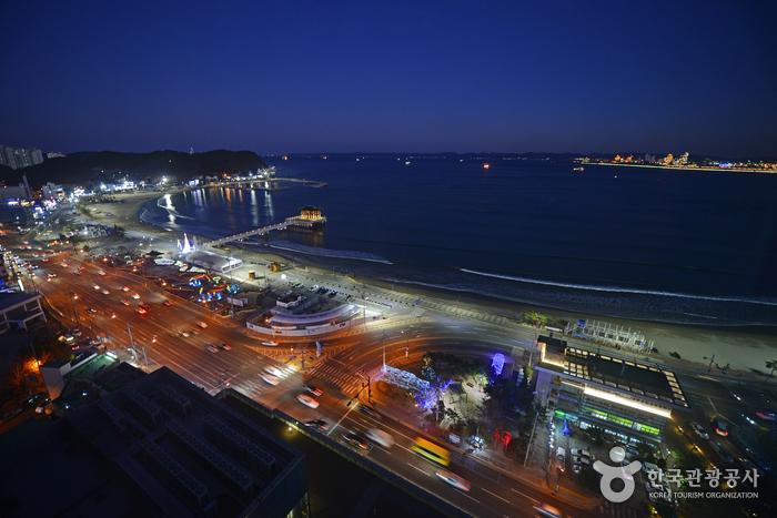 2018 평창 동계올림픽 성화봉송 지역축하행사가 열리는 영일대해수욕장 야경
