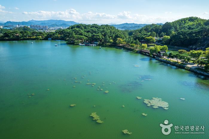 Водохранилище Ыйримчжи и лес Черим (제천 의림지와 제림)12